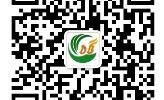 上海点步企业管理咨询中心