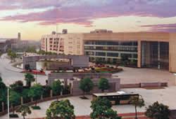 浙江省教育厅办公室关于举办2021届高校毕业生系列专场招聘活动的通知