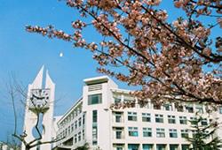 """我们来了""""山东名企联合招聘会青岛大学专场"""