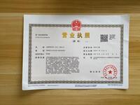 九鹏网络科技(山东)有限公司