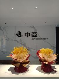 中亚圣诺工程有限公司