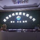 深圳市龙海咨询策划有限公司