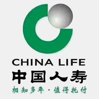 中国人寿保险股份有限公司保山分公司