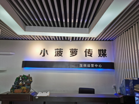 深圳市小菠萝文化传媒有限公司