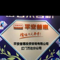 平安普惠投资咨询有限公司江门万达分公司