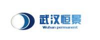 武汉恒景伟业科技有限公司
