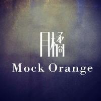 月橘女装(广州)商行