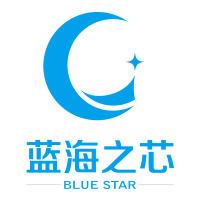 成都蓝海新晟科技有限公司