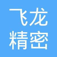 浙江飞龙精密铸造有限公司