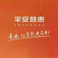 平安普惠投资有限公司
