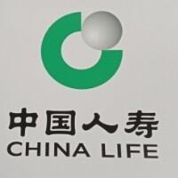 中國人壽股份有限公司天津武清支公司