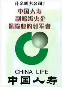 中国人寿保险股份有限公司台山市支公司