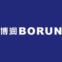 山东博润工业技术股份有限公司