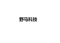 广州野马科技有限公司