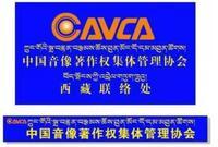 西藏中卓文化傳媒代理有限公司
