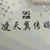 沈阳市凌天翼文化传媒发展有限公司