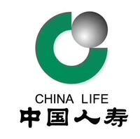中国人寿保险股份有限公司武汉市江夏区支公司