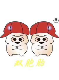 鄂州双胞胎猪业有限公司