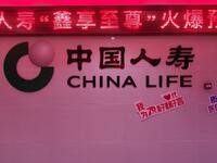 中国人寿保险股份有限公司六安分公司
