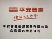 平安普惠信息服務咨詢有限公司
