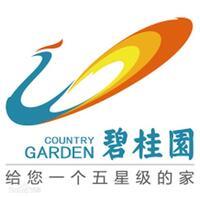 碧桂园智慧物业服务集团股份有限公司阳山分公司