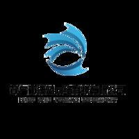 茂名市浅蓝网络科技有限公司