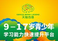 天津市天脑传奇文化发展有限公司