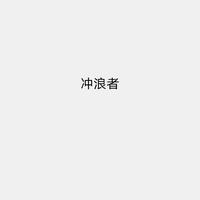 河南冲浪者网络科技有限公司