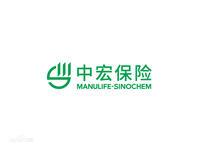 中宏人寿保险有限公司上海分公司