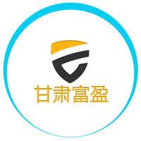 甘肃富盈电子科技信息有限公司
