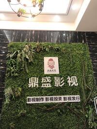 淮北鼎盛影視傳媒有限公司