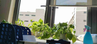 霍度(上海)科技发展有限公司