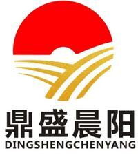 北京鼎盛晨阳科技有限公司