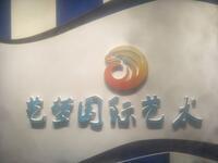 深圳艺梦国际影视艺术培训有限公司