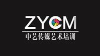 河南省中艺文化传媒有限公司