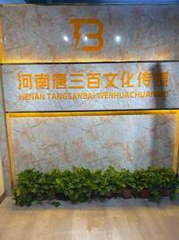 河南唐三百文化传媒有限责任公司
