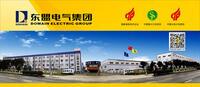 东盟电气集团南京股份有限公司