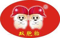江门双胞胎猪业有限公司