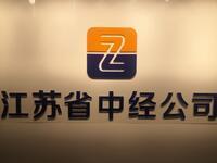 江苏省中经人力资源开发服务有限责任公司