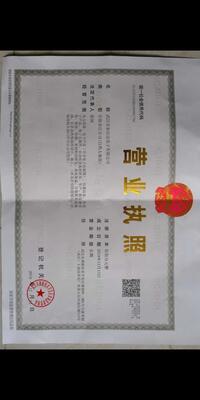 武汉市泰信达电子有限公司