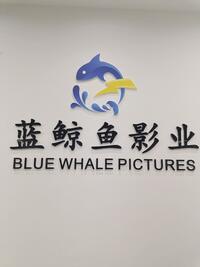 四川蓝鲸鱼影视文化有限公司