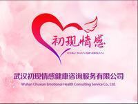 武汉初现情感健康咨询服务有限公司