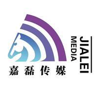 嘉磊网络科技有限公司