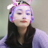 深圳市智博新能源有限公司