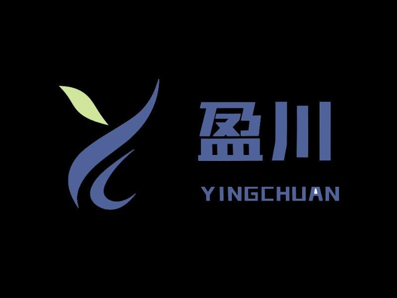 重庆盈川信息技术服务有限公司