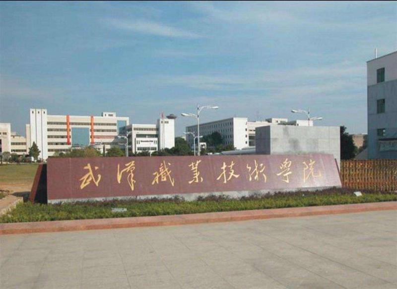 湖北省2020屆高校畢業生春季網絡招聘會武漢職業技術學院專場招聘會