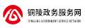 铜陵政务服务网