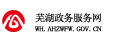 蕪湖政務服務網