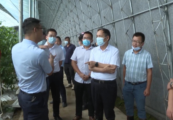 黃州區優化營商環境出實招見實效